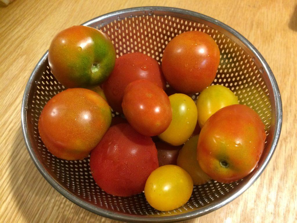 消費 トマト 大量