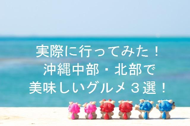 実際に行ってみた!美味しかった沖縄本島グルメ3選【中部・北部編】